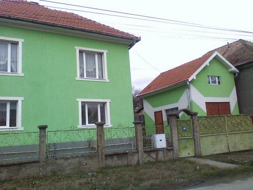 verde-5