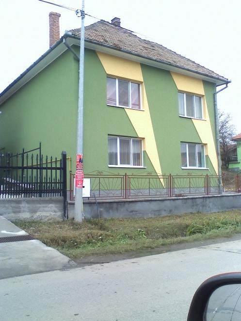 verde-81